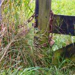 Nieuwe sloten aan Oude kettingen