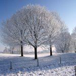 Winter op de Golbaan